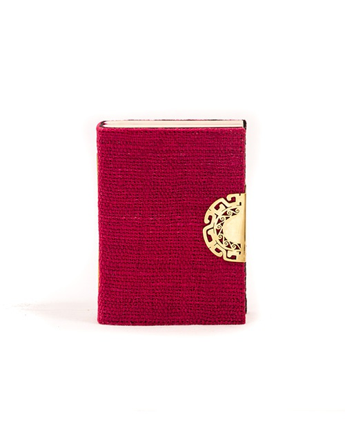 Fuchsia Salinar Journal
