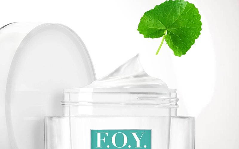 F.O.Y. Fountain of Youth