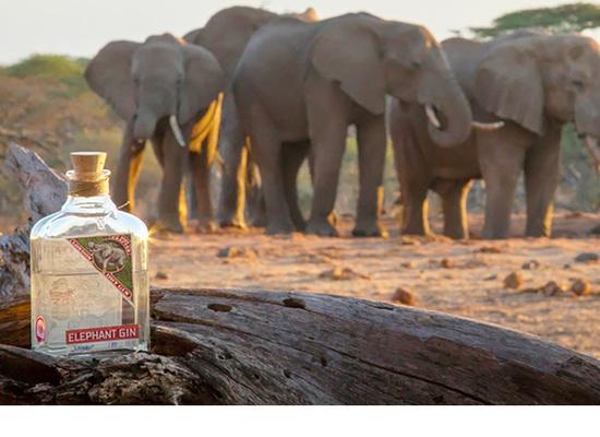 Elephant Gin hero image